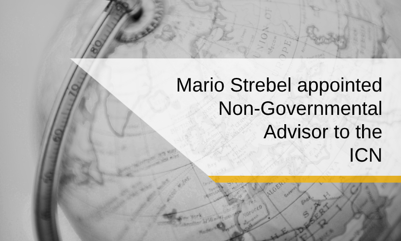 Mario Strebel als NGA des ICN